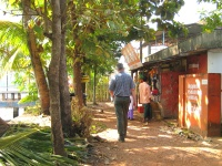 Walk along backwaters to Champakulam