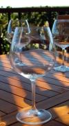 Napa Valley wine glass