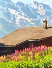 Switzerland Murren