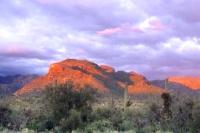 Tucson Sabino Canyon